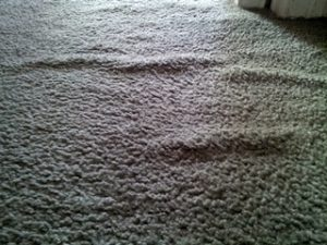 carpet-wrinkles-2