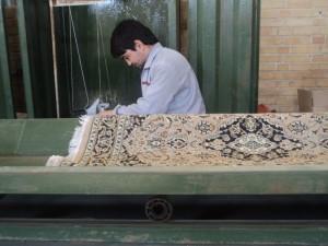 تعمیره شیراز فرش