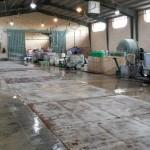 سالن شستشوی فرش کارخانه قالیشویی ادیب