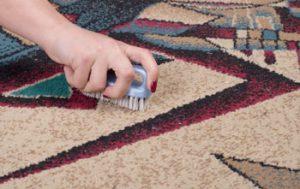 برس-فرش-شستشوی-فرش