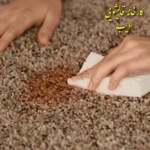 پاک-کردن-لکه-خورشت-از-روی-فرش