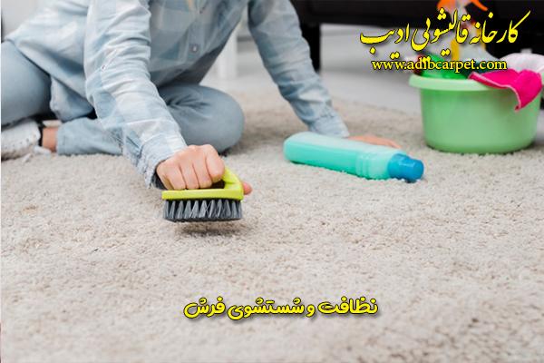 نظافت و شستشوی فرش